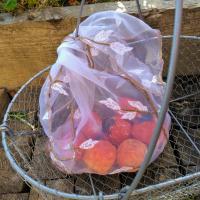 sac à légumes et panier