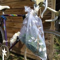 haricots verts dans un sac à vrac sur un vélo